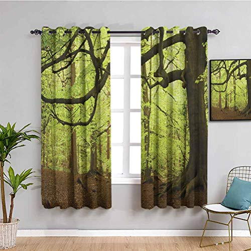 SONGDAYONE Woodland Farmhouse curtain, Curtains 39 inch length English Woodland Scene with Sun Rays though the Trees Magical Mother Nature Theme Protective furniture Green Brown W55 x L39 Inch