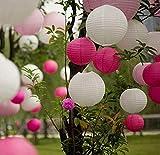 EQLEF - Farolillos redondos de papel, 10 huecos de 8 pulgadas, para decoración de fiesta de Navidad, cumpleaños, boda, color blanco y rosa rojo