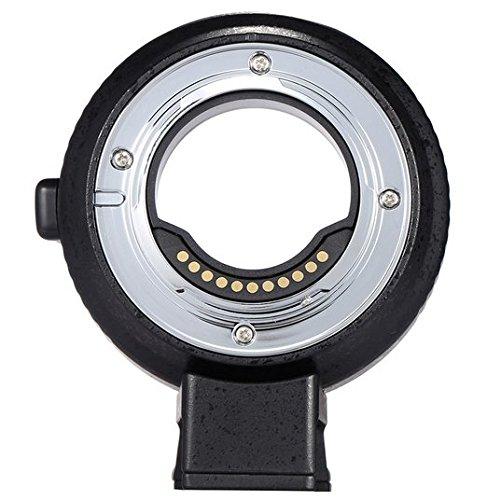 Preisvergleich Produktbild GOWE Autofokus AF Elektronischer Objektivadapterring für Canon EOS EF / EF-S Objektiv zur Verwendung für Olympus Panasonic M4 / 3 Kamera