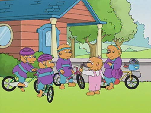 The Berenstain Bears The In Crowd / Fly It