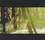 Songtexte von Childish Gambino - Camp