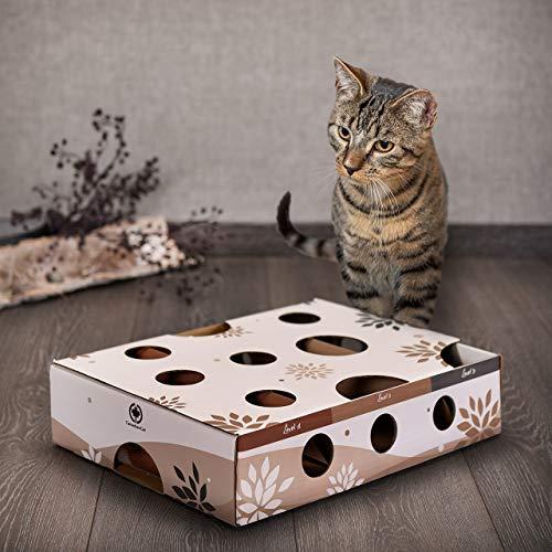 CanadianCat Company ® | Katzenspielzeug MagicBox | 40 x 30 x 9,5 cm | Activitybox Intelligenzspielzeug Futterspiel Agility