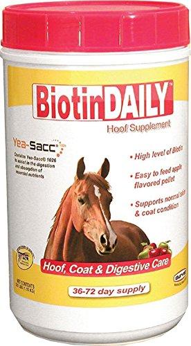 Durvet 01 0027 Biotin Daily Horse Hoof Care