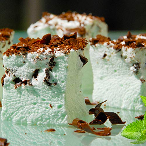 Gourmet Marshmallows Mint Peppermint Patty By Molly And Mia 12