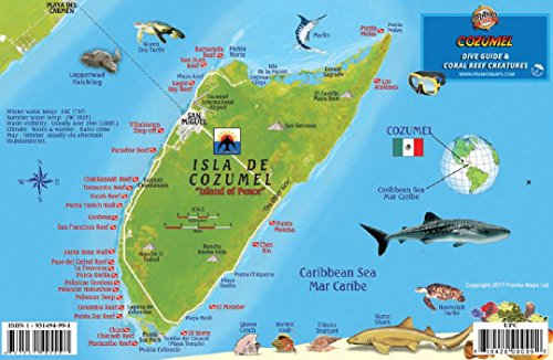 Outdoor Sport Cozumel Fish and Creature Guide Franko Laminated Maps - Fish ID and Maps Franko's Maps About 9 x 6 Snorkel Snorkeling Travel Scuba Dive Diving Diver Model: