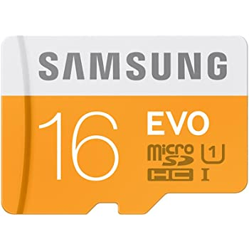 Samsung EVO Class 10 16GB MicroSDHC 48 MB/S Memory Card without SD Adapter (MB-MP16D/IN)