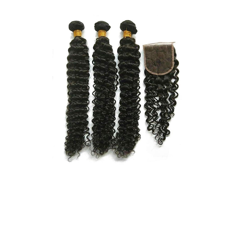 意識的目に見える減少BOBIDYEE ブラジルの黒人男性の深い巻き本物の人間の髪の毛の編み物のかつら合成毛レースのかつらロールプレイングかつら (色 : 黒, サイズ : 24inch)