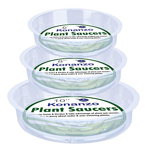 Medium 3 Pack 12 8inch Diameter Plastic Planter Saucers Planter Dishes That Are Perfect for Any Plant Outdoor or Indoor Perfect for Drainage and Preventing Spills!