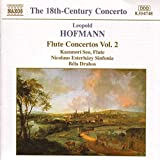 Flute Concertos Vol. 2 - azunori Seo