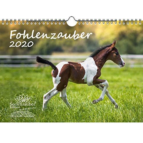 Fohlenzauber DIN A4 Kalender 2020 Pferde und Fohlen - Seelenzauber