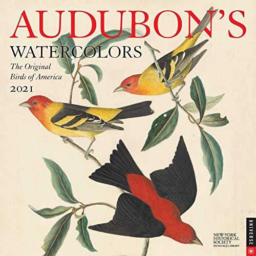 Audubon's Watercolors 2021 Wall Calendar: The Original Birds of America