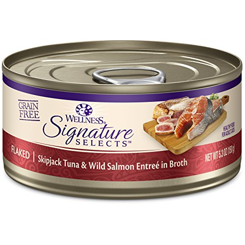 Wellness Core Signature Selects Grain Free Wet Canned Cat Food, Flaked Skipjack Tuna & Salmon, 5.3-Ounce (Pack Of 12)