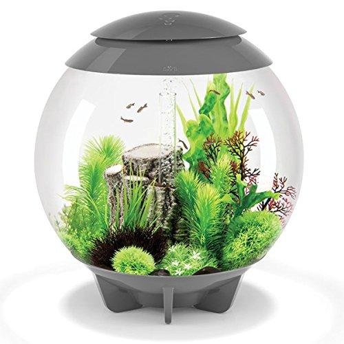 biOrb Aquarium Halo 30 l gris avec éclairage LED MCR