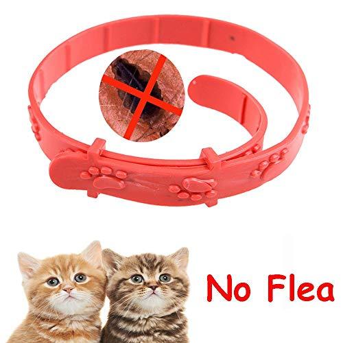 Verstellbares Pflegewerkzeug für Katzen und Kätzchen, gegen Flöhe, Milben, Acari, Zecken, Haustierhalsband