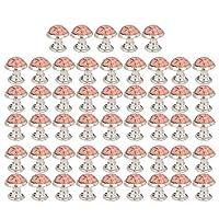 𝐂𝐡𝐫𝐢𝐬𝐭𝐦𝐚𝐬 𝐆𝐢𝐟𝐭 使用中の美しい寛大な耐久性ラウンドターコイズスパイク、ラウンドリベット、簡単なインストールDIYクラフトのための耐食性DIYレザーDIY装飾(no. 13)