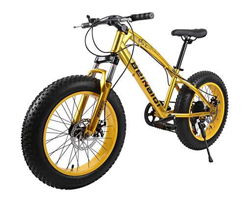 XCBY Mountainbike Fahrrad,Fat Bike,Snow Bike - 26 Zoll, Doppelscheibenbremsen, Breite Reifen, Verstellbare Sitze Gold-27Speed