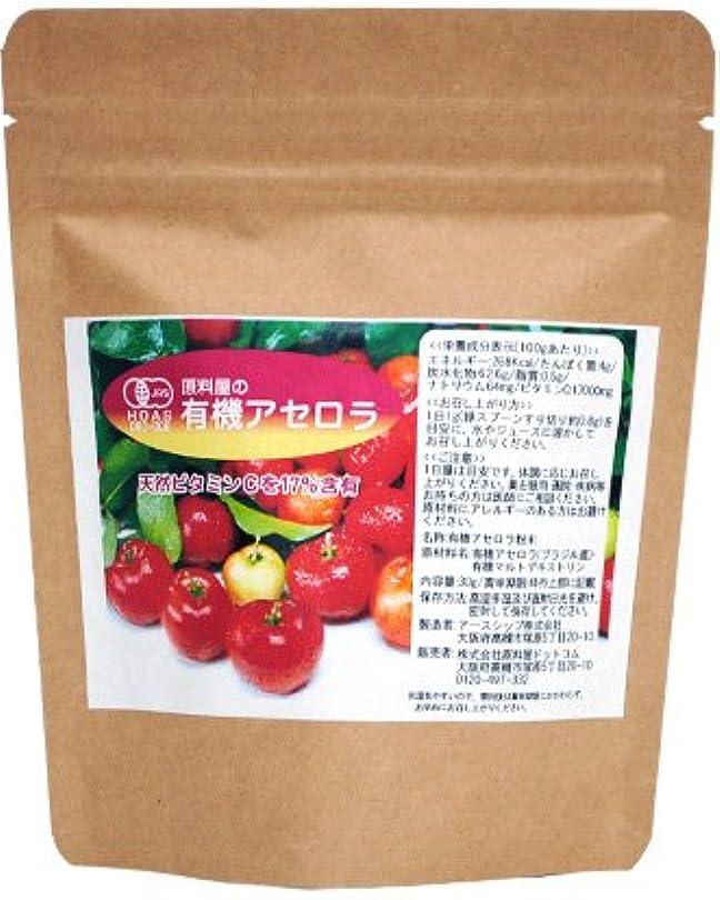 苗空白メンタル天然ビタミンC オーガニック アセロラ 粉末 30g