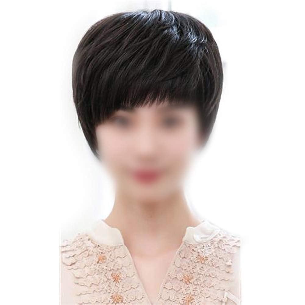 プット丘ジャーナリストYrattary 中年のファッションかつらのための女性の自然な手織りのリアルヘアショートカーリーヘアーウィッグ (Color : Dark brown)