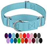 Country Brook Design - Martingale Heavyduty Nylon Dog Collar (Various Sizes &...