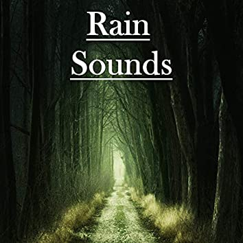 15 Rain Sounds from Mother Nature
