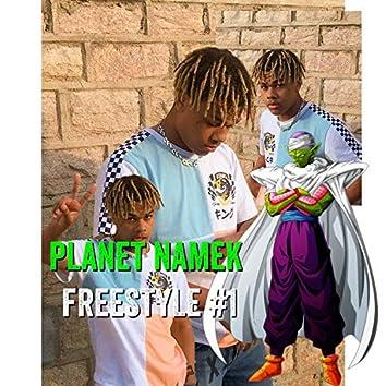Planet Namek Freestyle. 1