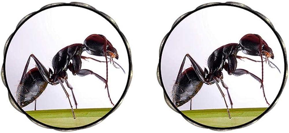GiftJewelryShop Bronze Retro Style Foraging Ant Photo Clip On Earrings Flower Earrings 12mm Diameter
