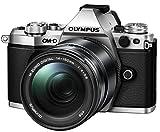 Olympus OM-D E-M5 Mark II Power Kit - Cámara EVIL de 16.1 MP (pantalla táctil de 3
