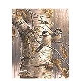 Pintura al óleo de Bricolaje,Pintura por números,Pájaro del árbol de la selva Pintar por Numeros Adultos Niñost Principiantes, para hogar decoración de casa (sin marco) 40 x 50 cm
