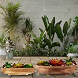 Relaxdays Dekoschale, 2 Stück, geflammtes Holz, Gartendeko zum Bepflanzen, Vintage Design, eckiges Pflanzengefäß, Natur - 2