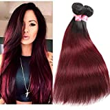 XCCOCO Brazilian Silky Straight Real Human Hair Extension 3 Bundles Black to Wine Red Ombre Two Tone Hair Weave Wefts(T1B/99J,20' 20' 22')