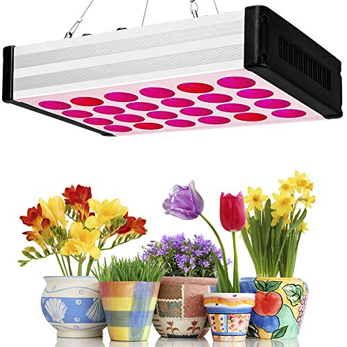 Led Grow Light 1000W, Bozily Indoor Plants Full Spectrum Grow Lamps with Dimmable Knobs/Hanging Kit/Daisy Chain/168 LEDs for Coverage Veg and Flowers ,Led Growing Plant Lights