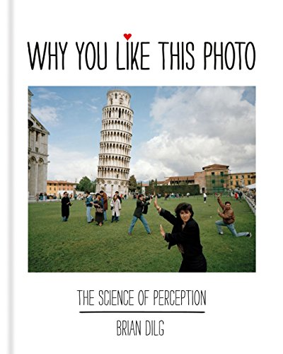 Why You Like This Photo: The science of perception (English Edition)