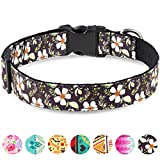 Taglory Verstellbares Hundehalsband,Weich & Komfort Hunde Halsband für Katzen und Extra Kleine Hunde,Schwarze Blume