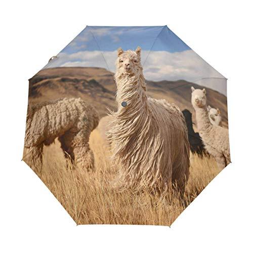 Suzanne Betty Auto Open Close Travel Umbrellas Alpacas in Andes Mountains 3 Folds Windproof UV Automatic Umbrella