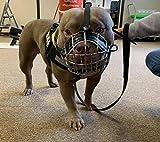 L&J Pets Uk Bozal para perro con cesta de alambre de metal fuerte para American Bully (B3, cuero negro y plata)