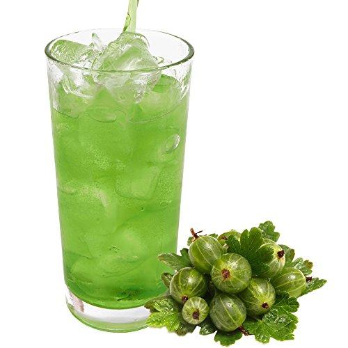 Stachelbeer Geschmack extrem ergiebiges Getränkepulver für Isotonisches Sportgetränk Energy-Drink ISO-Drink Elektrolytgetränk Wellnessdrink (333 g)