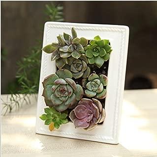 Mecai Modern Minimalist White Ceramic Succulent Planter Pot Window Box 6 inch(Photo Frame Type)