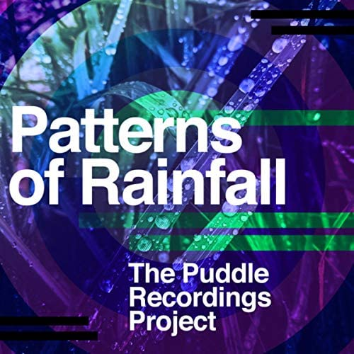 The Puddle Recordings Project
