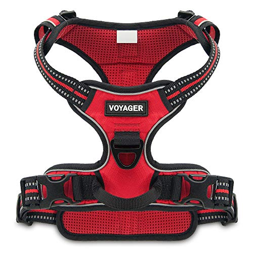 Voyager No Pull Dog Harness (X-Large) Anti-Pulling Trainging Pet Harnesses Non-Chaffing Padded and Breathable (Red Nylon Lattice)