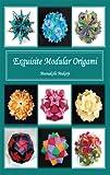 Exquisite Modular Origami (English Edition)...