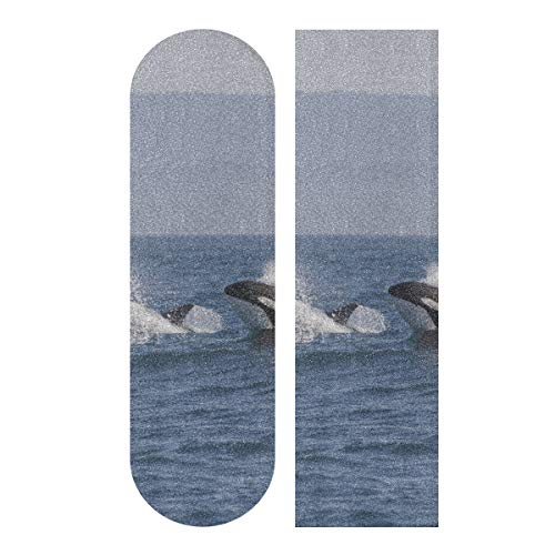 LMFshop 33,1x9,1 Zoll Sport Outdoor Skateboards Grip Tape Killerwal Orcinus Orca Print wasserdicht cool Skateboard Grip Tape für Tanzbrett Double Rocker Board Deck 1 Blatt