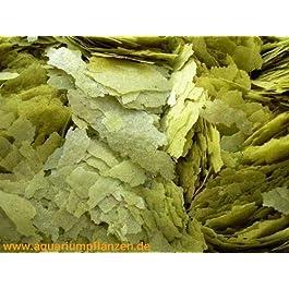 250 ml green fish food flakes, main food