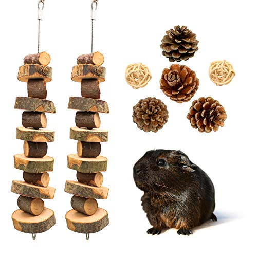 Roundler Small Animal Chew Toys, Apple Wood&Pine Cones Bunny...