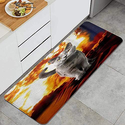 VAMIX Alfombra de Cocina,Fire Cat Explosion Película de acción Crazy Space Kitty,tapete Decorativo para Piso de Cocina con Respaldo Antideslizante, 47'x17'