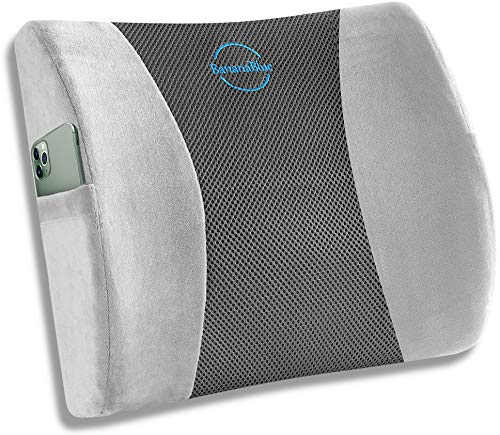Ergonomic Lumbar Support Pillow for Chair. Memory Foam Lower Back Support for Office Chair, Car Seat, Computer and Desk Chairs. Back Cushion for Office Chair Lumbar Support with Straps. Gray