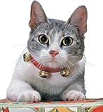 Rubie's Costume Co Cat Apparel