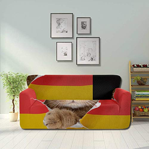 JEOLVP Cat Looking Through Hole Paper German Stretchable Sofa Covers Furniture Sofa Covers Fitted Furniture Protector 2&3 Seat Sofas