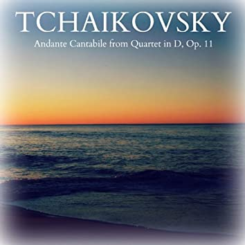 Tchaikovsky: Andante Cantabile from Quartet in D, Op. 11