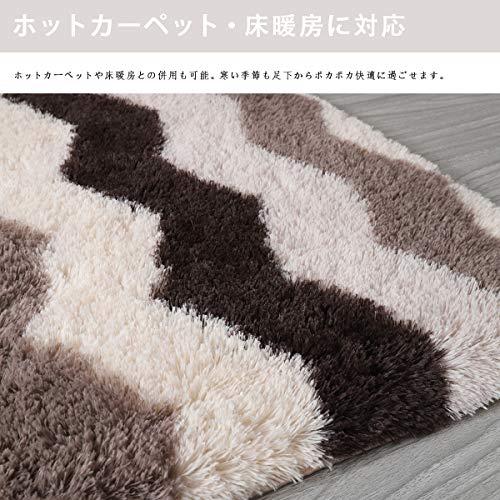 カーペットOnehome長方形ラグマット極厚毛足約4.0cm絨毯防ダニ滑り止め付抗菌防臭160×200cm(約2畳)洗えるふわふわ一年中使える多色選床暖房対応冷房対策(ブラウン,160x200)