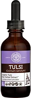 Global Healing Center Organic Tulsi Raw Herbal Extract, Holy Basil Leaf, Bioavailable Ayurvedic Herb, Natural Stress Support, 2 Fl oz